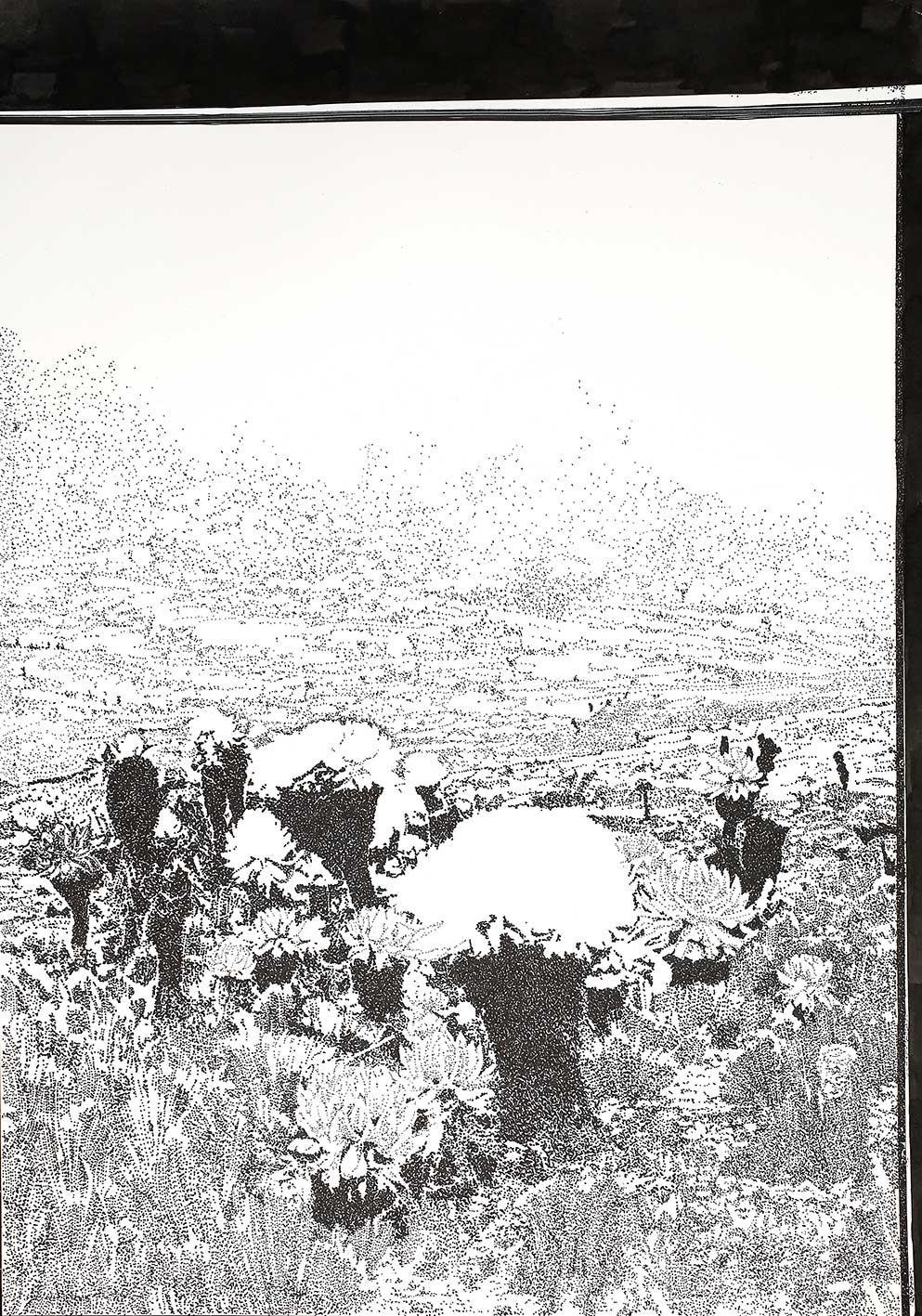 ohne Titel Tusche auf Papier 42 x 30 cm courtesy Galerie Krinzinger (Foto Jasha Greenberg)