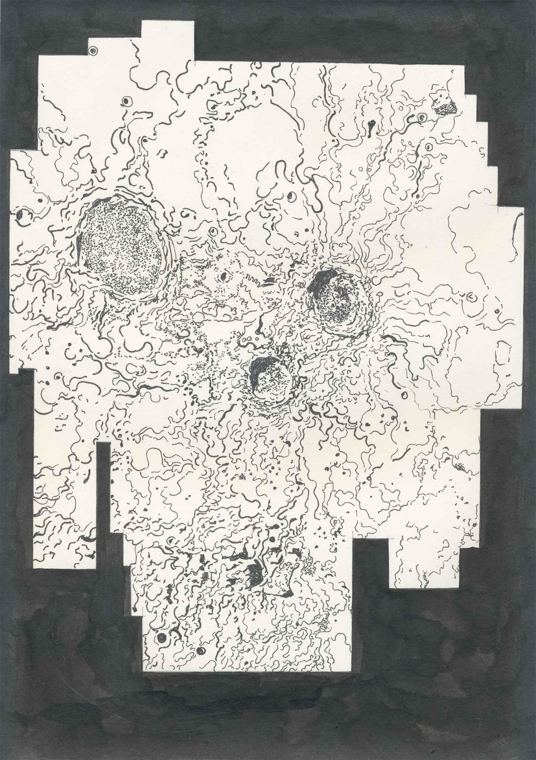 "aus der Serie: ""from beauty that is cast out of a mould"" 30 x 21 cm Tusche auf Papier"